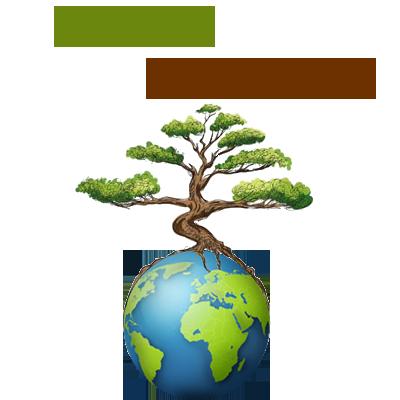 WoodElement